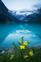 Summer at Lake Louise, Banff National Park, AB, Canada