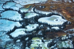 Frozen lakes surrounded by trees, Wood Buffalo National Park, Alberta, Canada