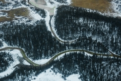 Rivers weaving through forest, Wood Buffalo National Park, Alberta, Canada