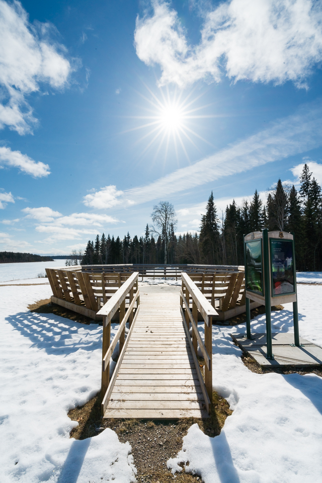 Wood Buffalo National Park - Alberta's best kept secret