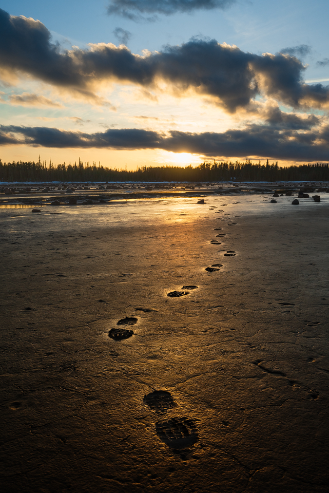 Footprints in the mud along the edge of Grosbeak Lake, Wood Buffalo National Park, Alberta, Canada
