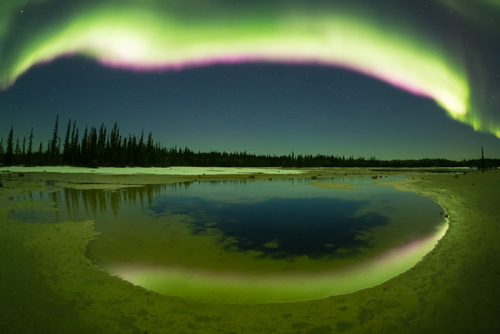 Pink underlining on the aurora at Grosbeak Lake, Wood Buffalo National Park, Alberta, Canada