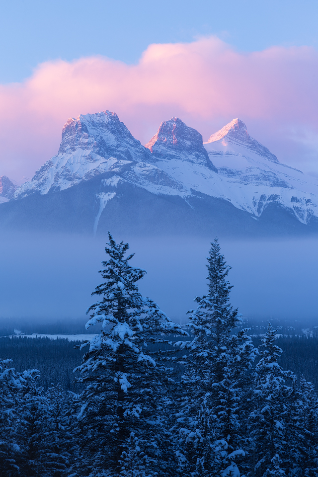 Fresh snowfall and morning fog at sunrise over the Three Sisters, Canmore, Alberta, Canada