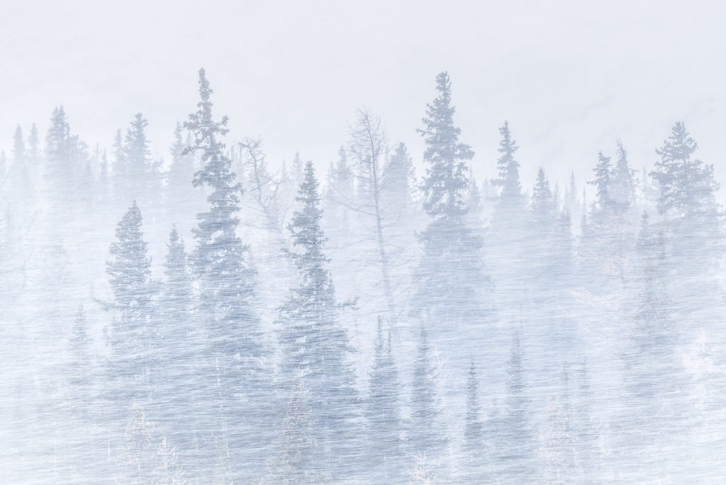 Blowing snow at Highwood Pass in Kananaskis Country, Alberta, Canada