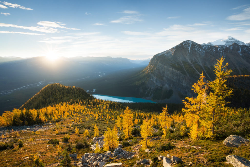 The view from the larch covered slopes of Mt St Piran at sunrise, an excellent fall photography spot in Banff National Park