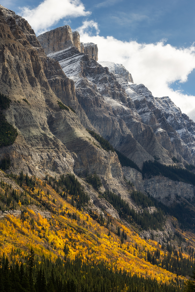 Fall color on the sides of Mt Wilson form the Rampart Creek area on the Icefields Parkway in Banff National Park