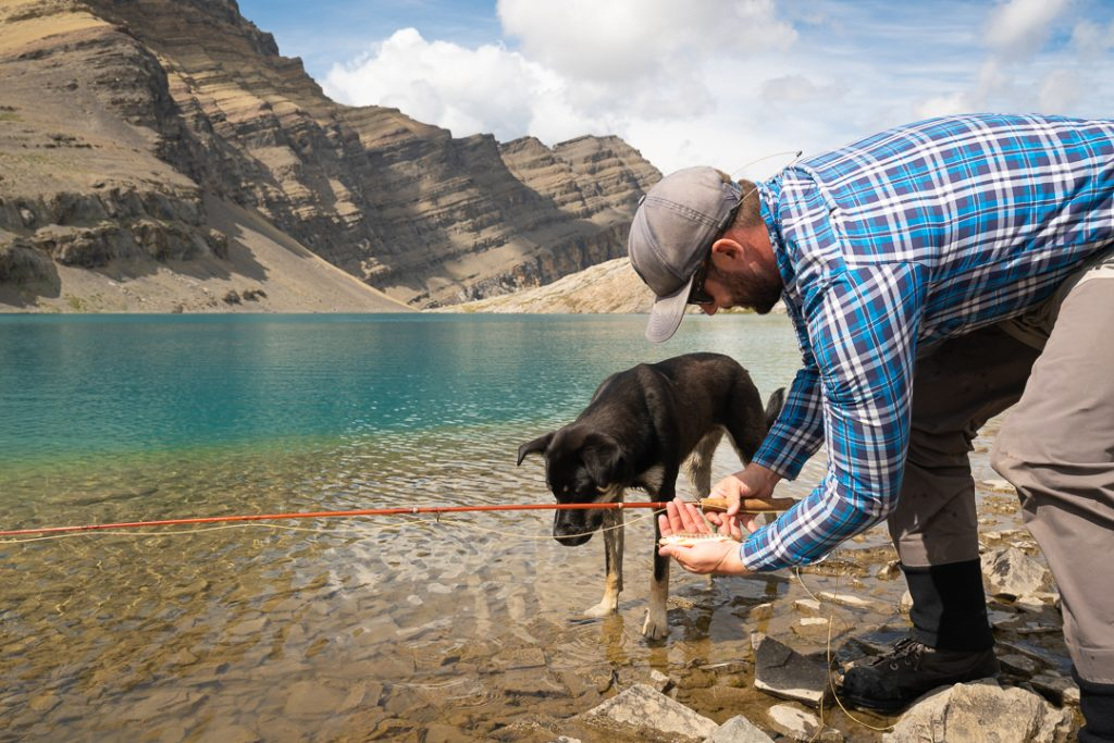 Fly Fisherman with dog by his side looking at a golden trout in his hand, Alberta, Canada
