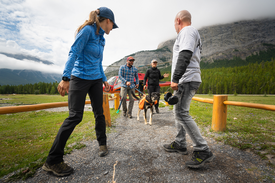 Disembarking from the helicopter with Carl the puppy at the Rockies Heli base area, Alberta, Canada